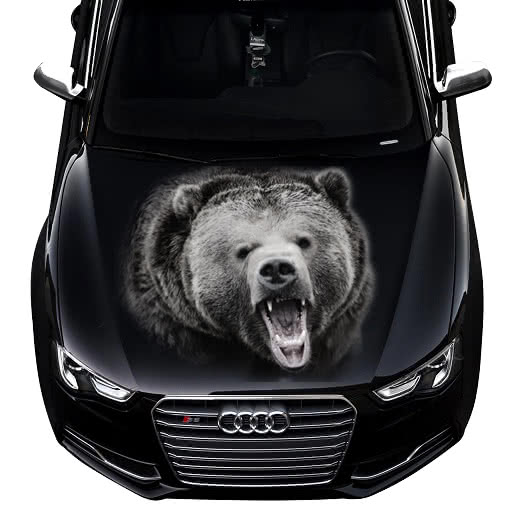 3d-car-hood-decal-bear