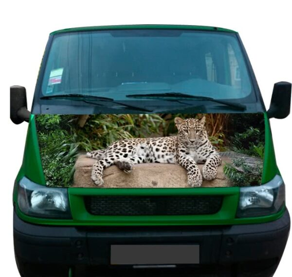 сar sticker leopard 168