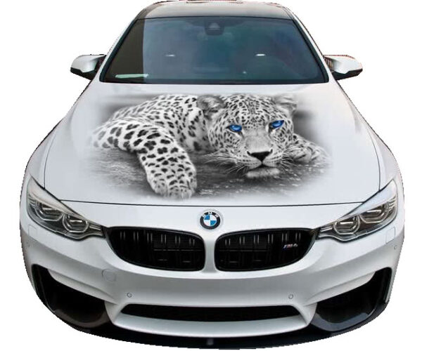 3d nakleika Leopard W