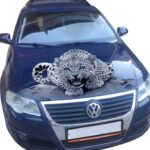 Леопард СФ
