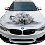 Леопард СК