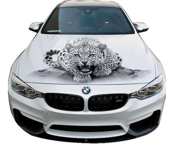 3d nakleika leopard G