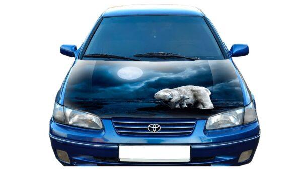 Nakleika-na-avto-medvedi-b