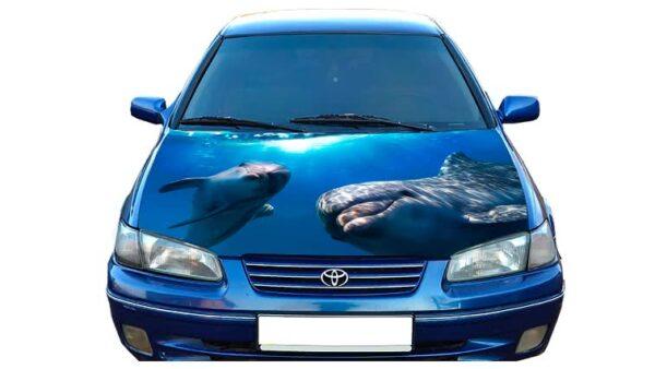 Nakleika_na_kapot_delfin