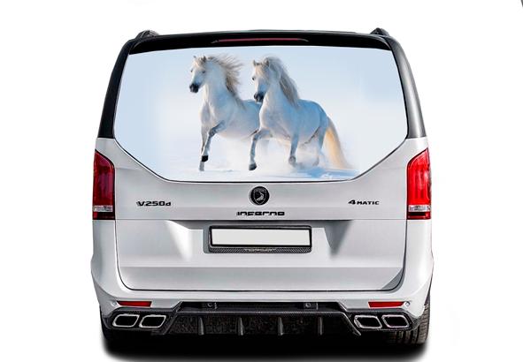 Nakleika-na-steklo-koni