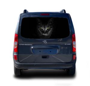 наклейка кот