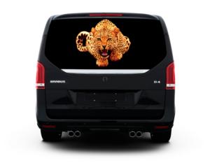Леопард золото