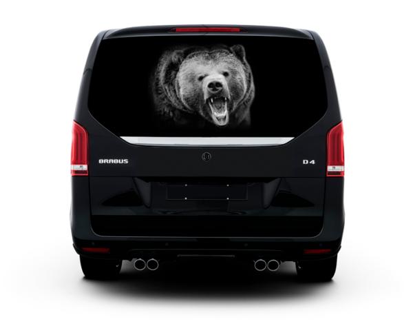 nakleika-na-steklo-medved