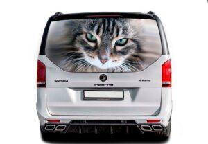 3д наклейка кот