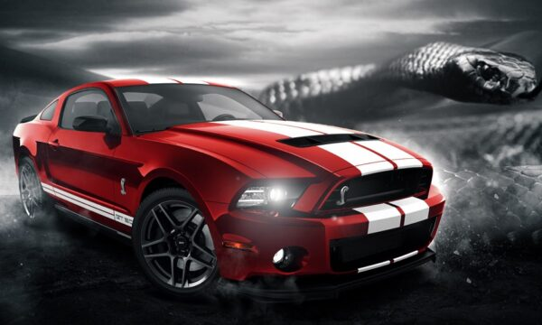 polosy-ford-mustang-gt-500