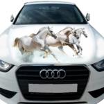 Тройка белых лошадей