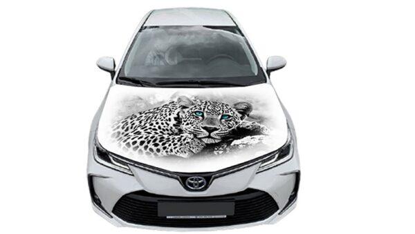 nakleika-na-kapot-leopard-beliy