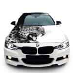 Леопард БМВ