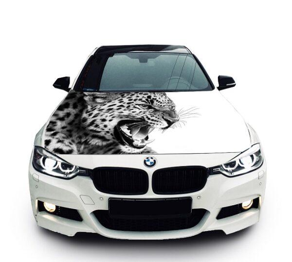 nakleika-na-kapot-leopard-bmw-1